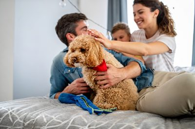 Happy young friendly family spending fun times together and cuddling with their pet at home